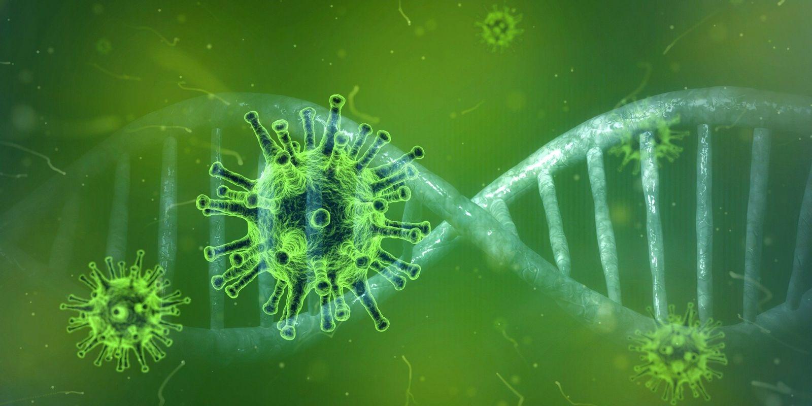 coronavirus in Nederland