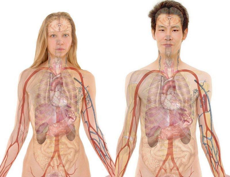 medische gezichtsanalyse