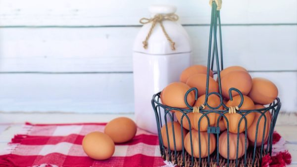 afvallen eieren