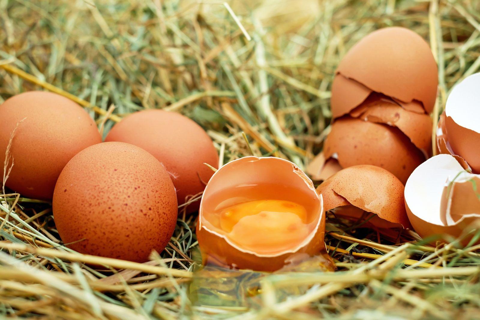 afvallen en eieren