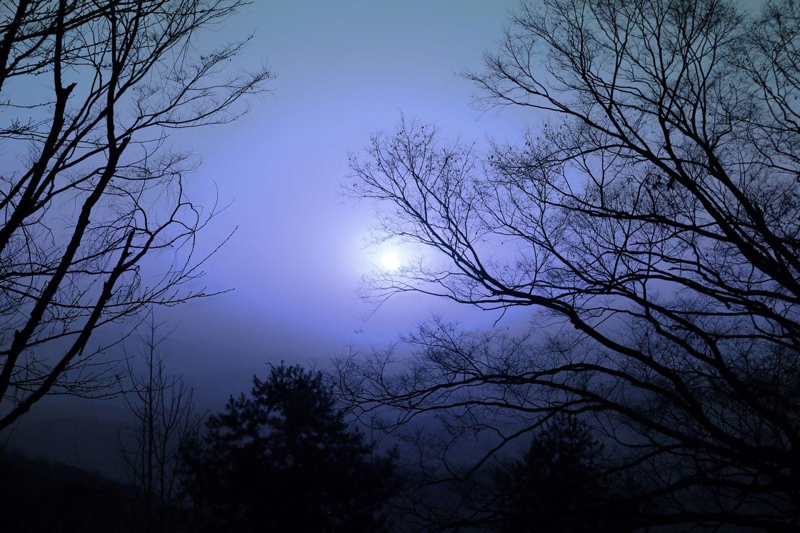 volle maan workshop